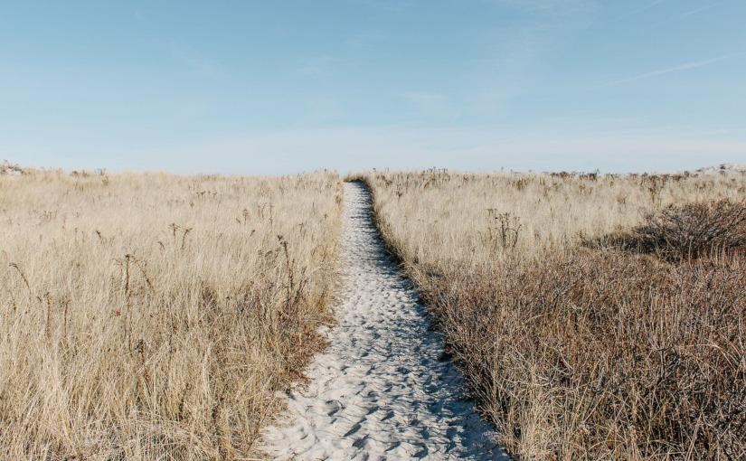 · La fin de la solitude · BenedictWells