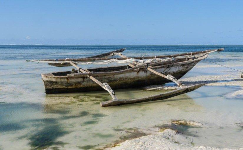 Le suspendu de Conakry · Jean-ChristopheRufin
